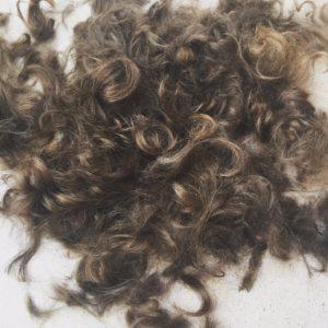 Charlie Sharpe Hair