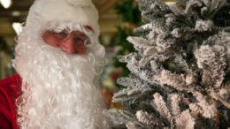 Santa Russells