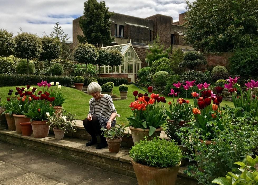 Celia Garden