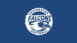 Chichester Falcons